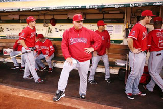 Nella foto Mike Scioscia (Brad Mangin/MLB Photos via Getty Images)