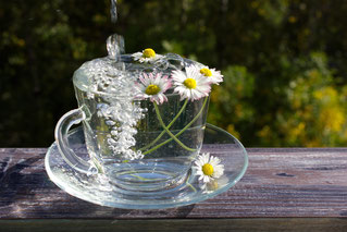 Reines Wasser, Schadstofffreies Wasser, Natürliches Wasser