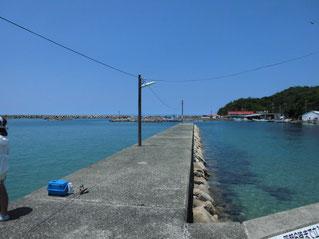 漁港周辺の砂地