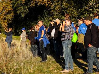 Die Exkursionsteilnehmer in der Auenlandschaft. - Foto: Kathy Büscher
