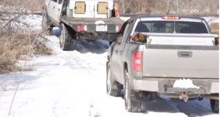March 6, 2015 Coyote hound hunters Polk/Burnett county