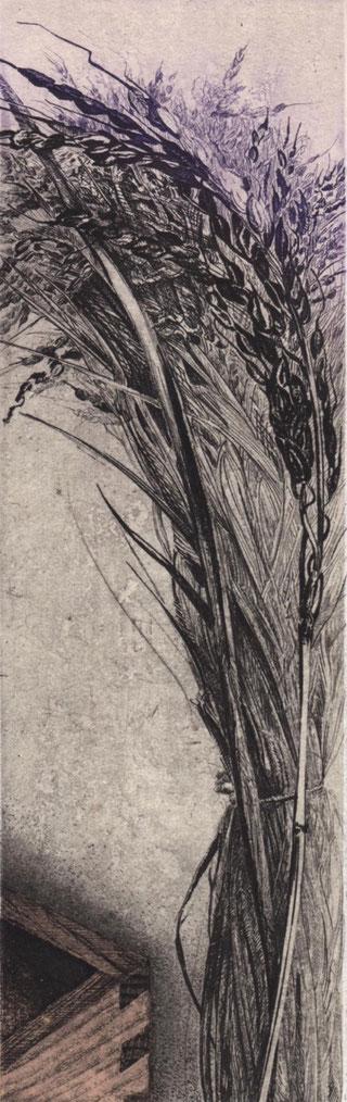 「みのり」 2015 銅版画・雁皮刷り 22.5x7cm