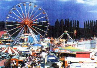 474. Eisleber Wiese 1995