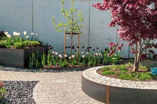 Bepflanzungen Dürig Gärten