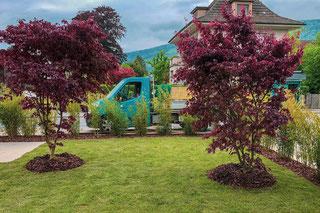 Gartenunterhalt Dürig Gärten