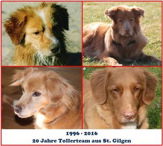 1996 - 2016 - 20 Jahre Tollerteam aus St. Gilgen
