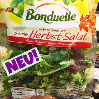 Bonduelle Herbst Salat