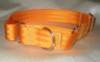 Martingale, Halsband, 2,5cm, Gurtband goldorange