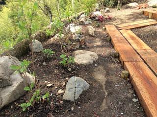 石組みと植栽