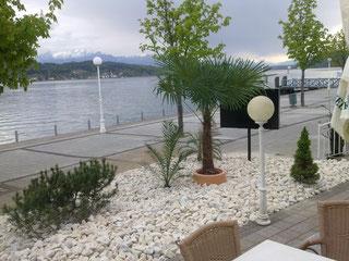 Kieß/Palmengarten beim Werzer Seerestaurant in Pörtschach