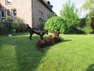 Baddy, Kira und Oskar