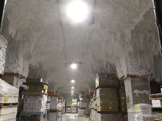 ANDY-LDS-FR -60℃LED 冷凍倉庫導入写真