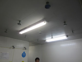 ANDY-LDS販売店 プールLED価格