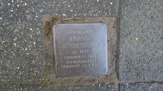 Johanna Kronenberg