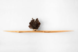 W1013 · Wych Elm#wallshelf#coffeetable#woodworking#interiordesign#woodsculptures#art#woodart#wooddesign#decorativewood#walldecoration#wallsculpture#originalartwork#modernwoodsculpture#joergpietschmann#oldwood
