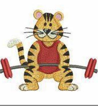 SPORT TIGER 3