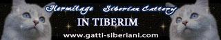 In Tiberium