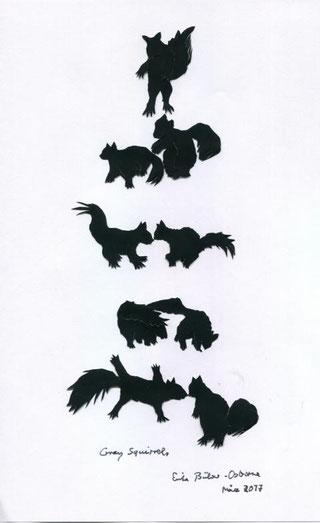 Scherenschnitt Großes Graues Eichhörnchen