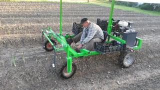 Erntefahrzeug für die Grünspargelernte, Pflegefahrzeug für Beetkulturen