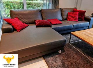 Professionelles Lederpflegeprodukt für Ihr Sofa.