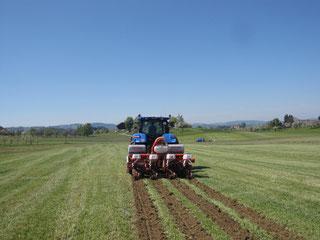 Traktor mit GPS-Lenksystem