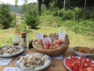 ランチメニュー。鶏の品種、日齢を知ってから食べるランチはまた格別!?