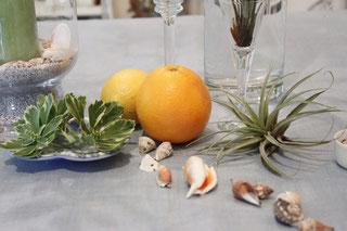 サマバケのコーディネートの差し色にオレンジとレモンを使用
