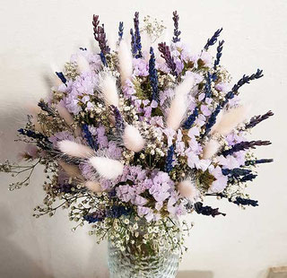 Lavendel in Wien kaufen