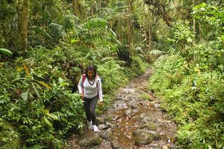 Wandern Trekking Kolumbien individuell Reise
