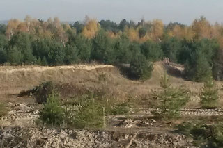 Tagebauliche Rekultivierung und Sanierung: Böschungssanierung, Erdbauarbeiten, forstliche Rekultivierung, Melioration, Düngung und Kalkung, Landschaftsbau, Biotoppflege