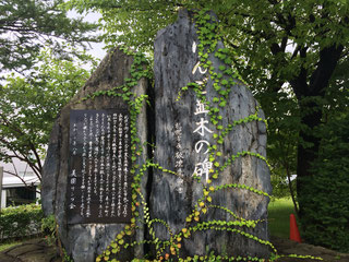 りんご並木の碑