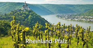 Rheinland-Pfalz entdecken!