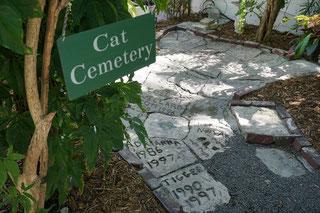 Der Katzenfriedhof