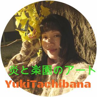 立花雪 YukiTachibana  ギンコと 炎と楽園のアート