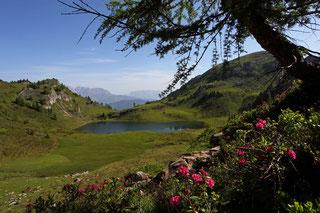 Bergseen wie die Paarseen oder der Tappenkarsee