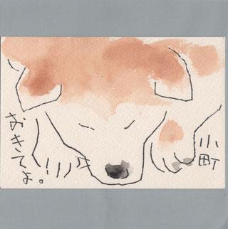 秋田犬 起きてよ。