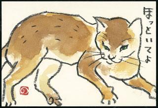 ペット ネコ