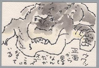 イリエワニ 上野動物園 フック