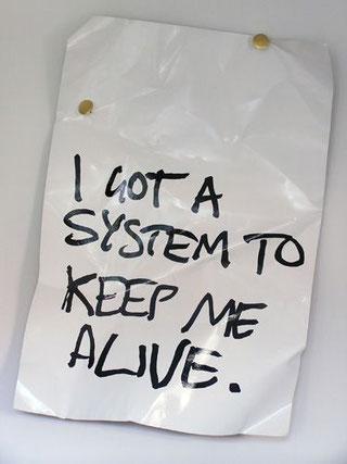 i got a system to kepp me alive Ich habe ein System, das mich am Leben hält