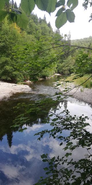 Selbst allein im Urlaub fällt es mir schwer Pause zu machen - hier beim Passieren der Wutach im Hochschwarzwald