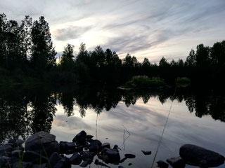 Schweden Teich Abend Abendsonne