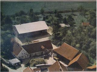Hofbild von 1956