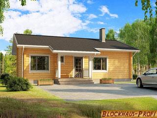 Singlehaus: Ebenerdiges Blockhaus-Bungalow 87