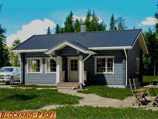 Kleines Blockhaus als Singlehaus - Holzhaus Bungalow - Qualität - Wohnhaus - Hausbau - nachhaltig - winterfest - Weser-Ems