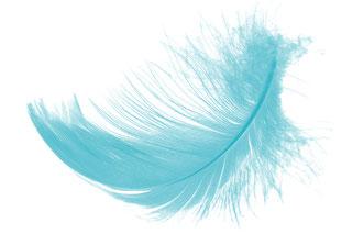 Angel-Face-Naturkosmetik - für eine Haut wie ein Engel