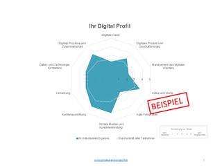 """Beispielhaftes Ergebnis """"Mein Digital Profil"""""""