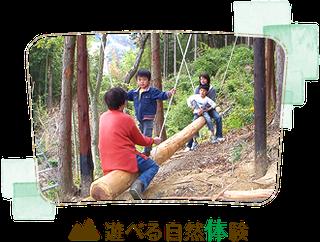 遊べる自然体験