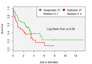 Kaplan-Meier-Kurve R - Survival Analysis - Log-Rank-Test - Survival Curve