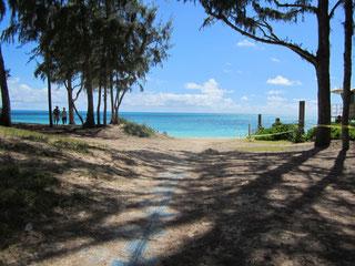 ハワイ オアフ島 海への道 シークレットビーチ 日本語ガイド付き貸切チャーター観光