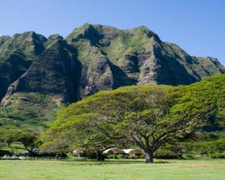 ハワイ オアフ島 クアロア山脈 日本語ガイド付き貸切観光プライベートチャーター